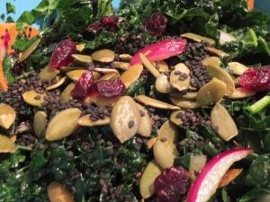 IMG_3954 Kale Salad