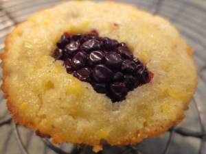 Blackberry Corn Muffin IMG_5292