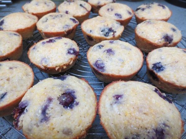 Corn Berry Muffins IMG_5535