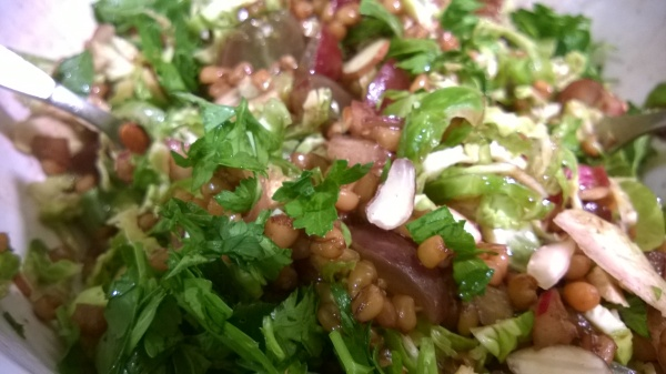 Wheatberries and Sprouts Salad with Red Grapes and Almonds
