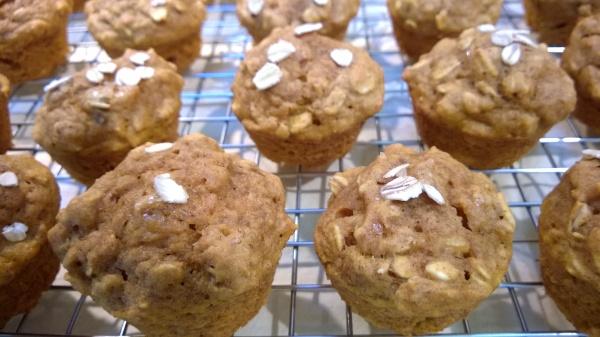 pumpkin oatmeal mini muffins