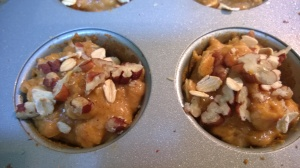 pumpkin oatmeal mini muffins with pecans