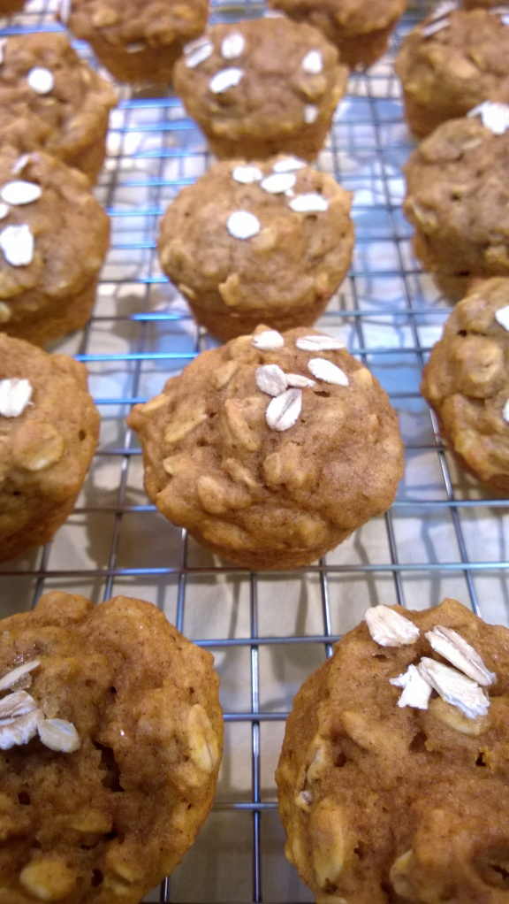 Pumpkin Oatmeal Mini Muffins