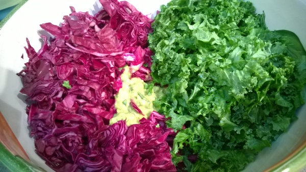 Purple Cabbage and Green Kale with Avocado and Herb Dressing